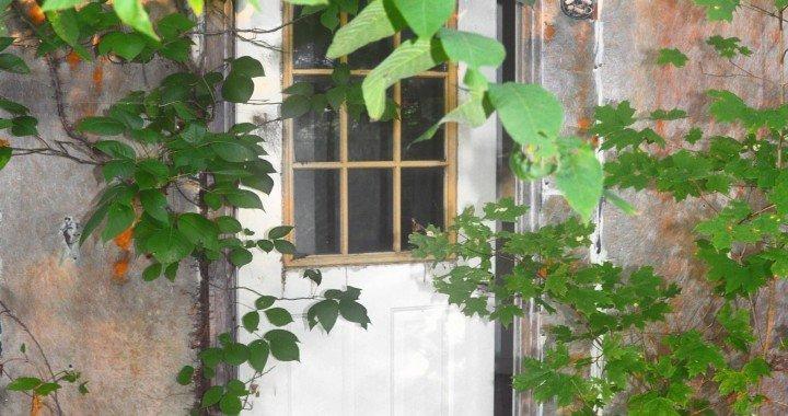 FOXY OXIE Home Renovation Checklist